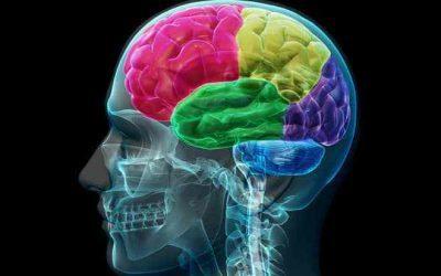Practical, Simplified Neuromarketing